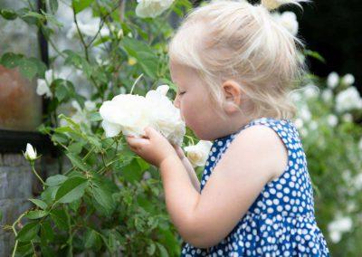 website-3-Gardenista-5-1024x683