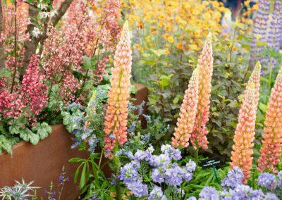 website-35-Gardenista-37-1024x683